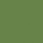 Verde Ilusión