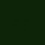 Verde Noche